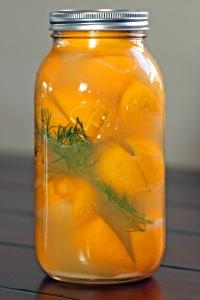 preserved-lemons7